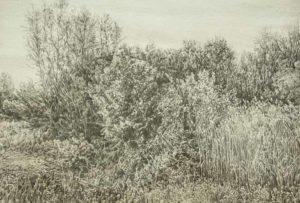 Gerhard-Brandl_broken-landscapes