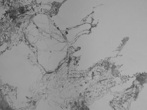 Die Neuen Iona-Steixner_4Membra-Detailsmall